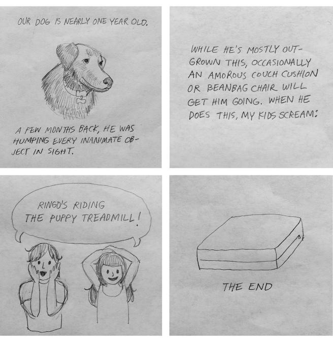 Puppy Treadmill